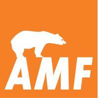 Подвесные потолки AMF-Knauf (Германия)